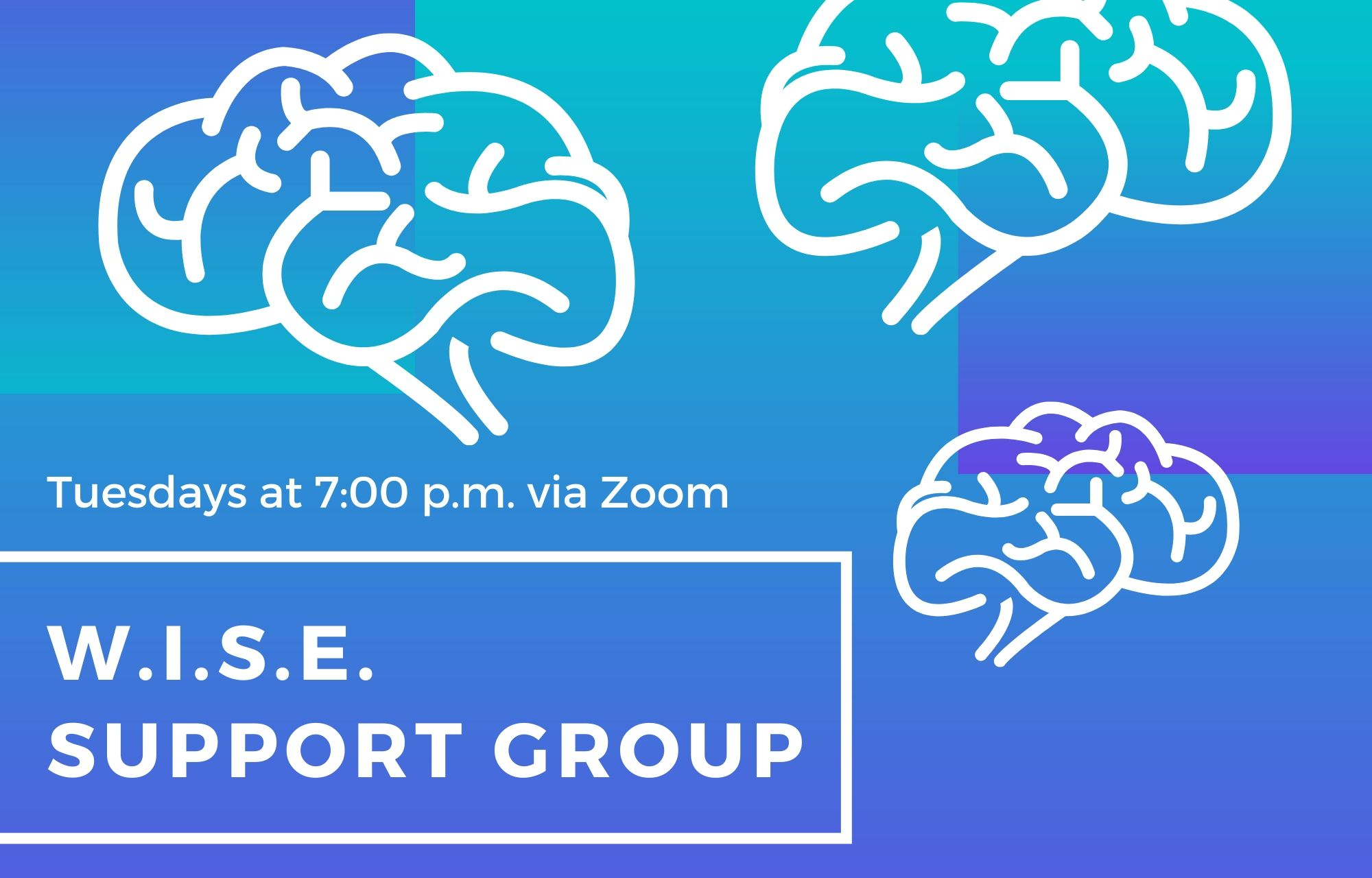 WISE Support Group: Tuesday Evenings