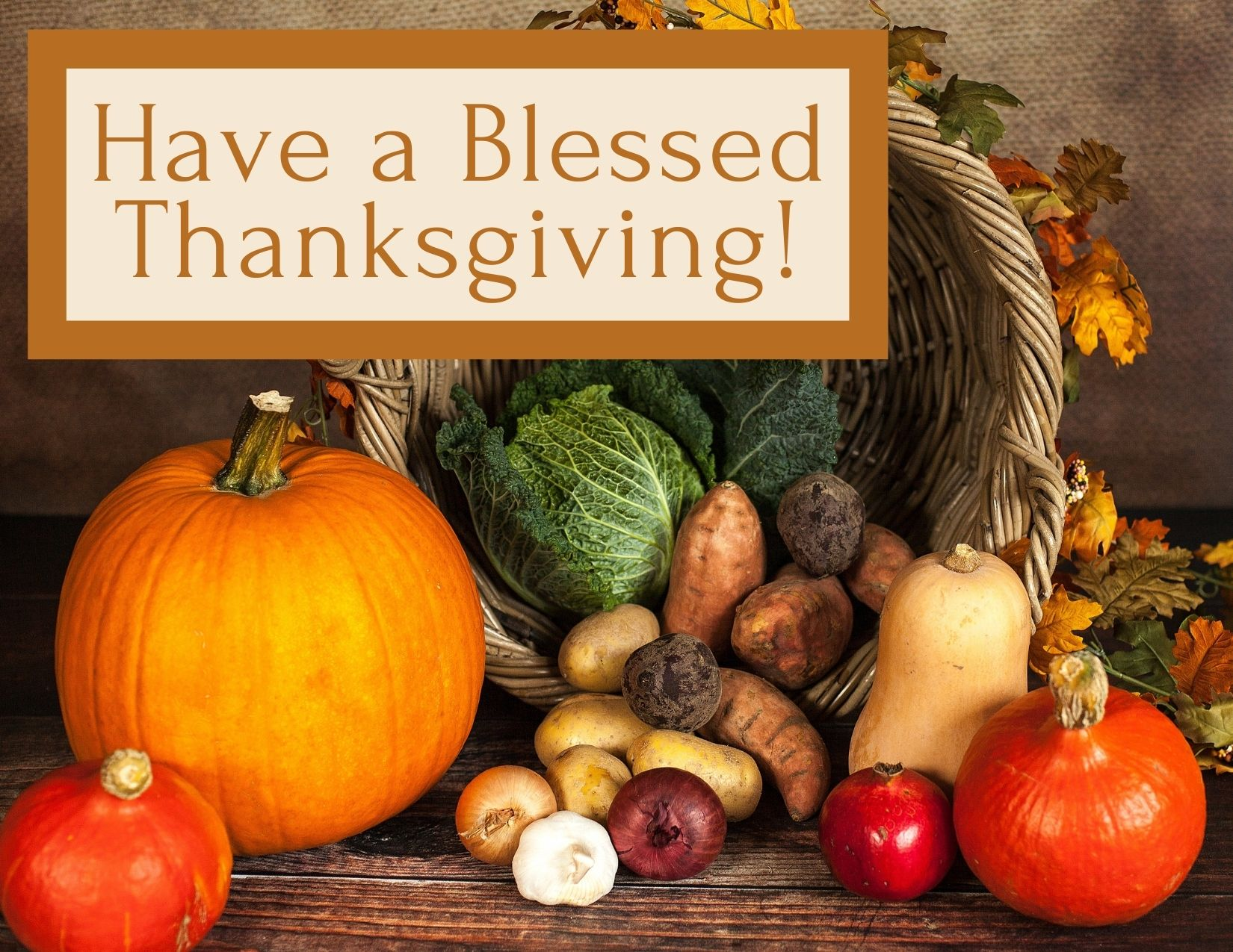 TEXT: Have a Blessed Thanksgiving! IMAGE: Cornucopia with textbox